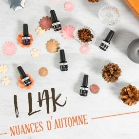 I-LAK Autumn 2018