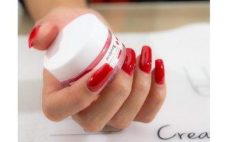 DIP in + couleur sur ongles naturels